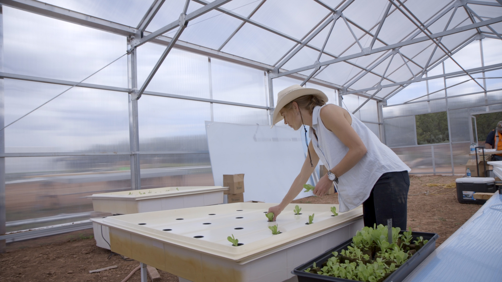 Indige-FEWSS graduate student Bekah Waller planting lettuce in a hydroponic system.