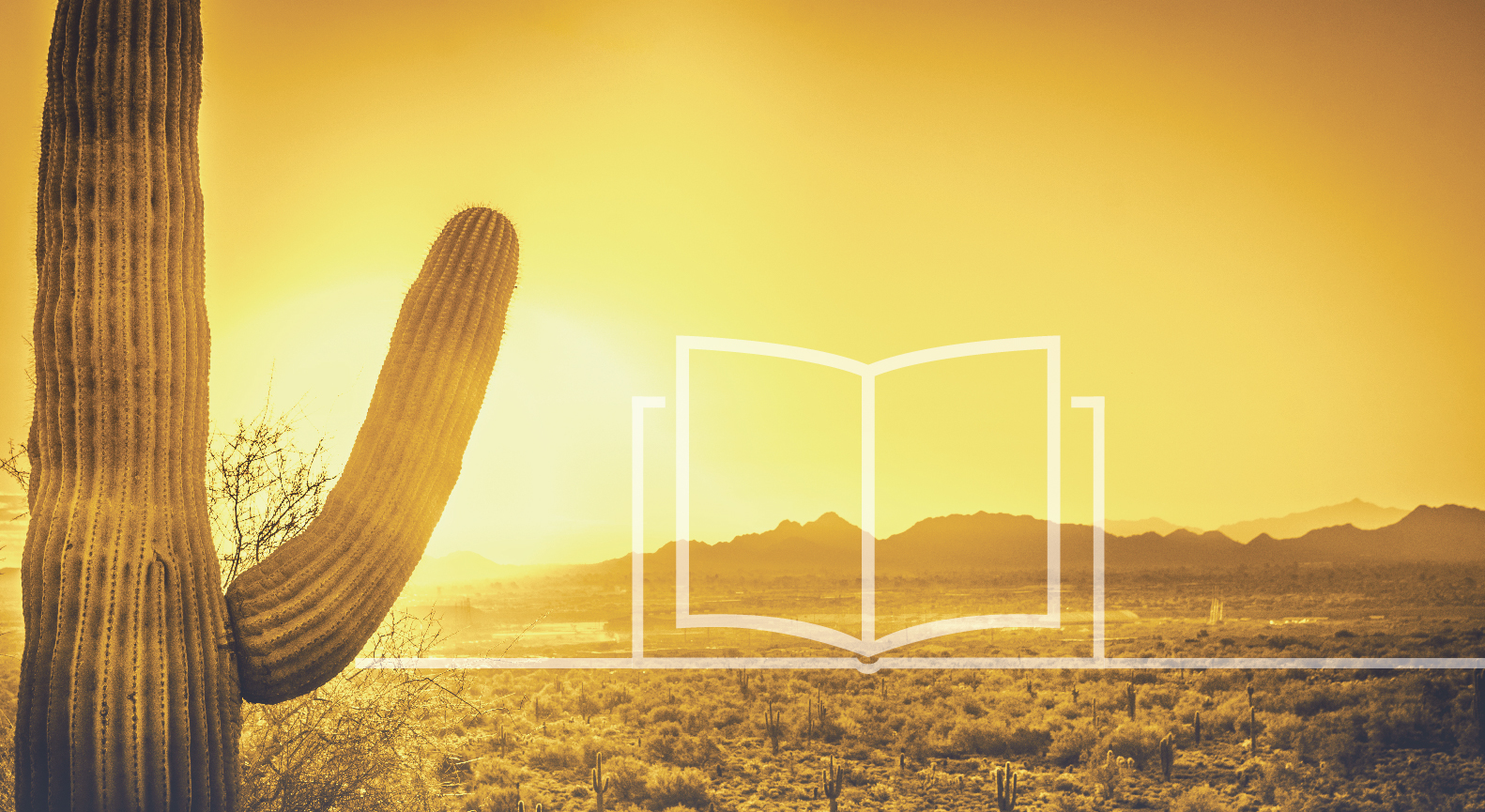 faint illustrated book floating over the desert next to a saguaro cactus