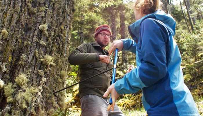 Anchukaitis is teaching a college to take a tree ring sample