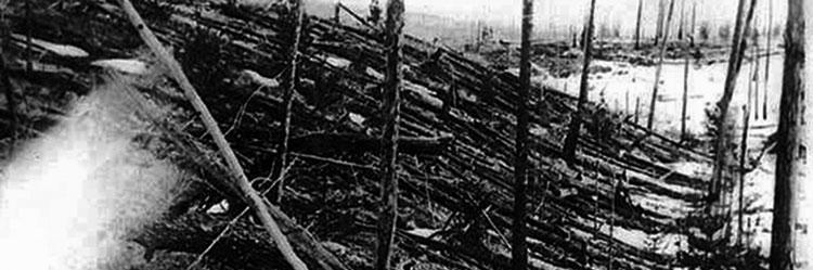 1908 Tunguska Impact event, trees laying on their sides