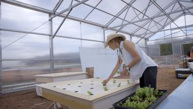 Indige-FEWSS graduate student Bekah Waller planting lettuce in a hydroponic system.